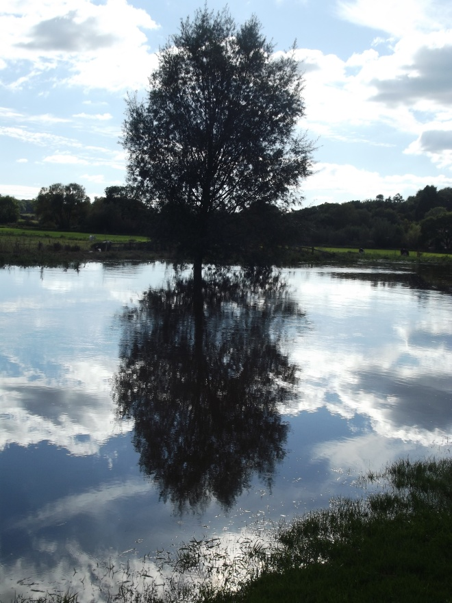 This is the River Parrett; it enters the sea at Bridgwater, but here it is, flooded at Langport