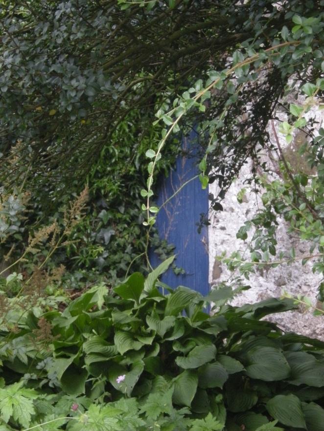 A thin shadow of a shade quavered through the garden door