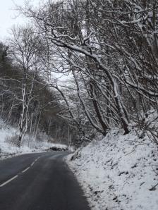 ax snow (3)