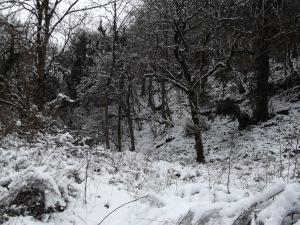 ax snow (6)