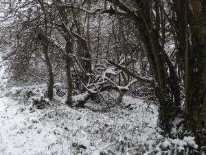 ax snow (8)